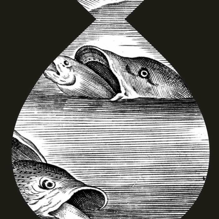 AB40 ART & MUSIC: The World of Bruegel in Black and White - Book of air VOLLK x Phlegm
